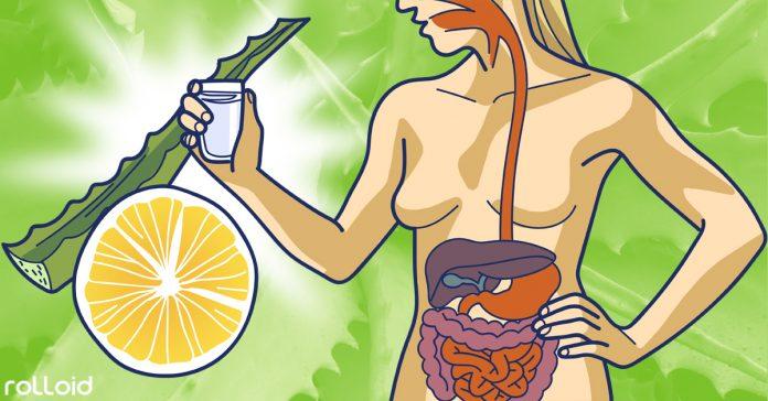 6 formas aprobadas por nutricionistas banner