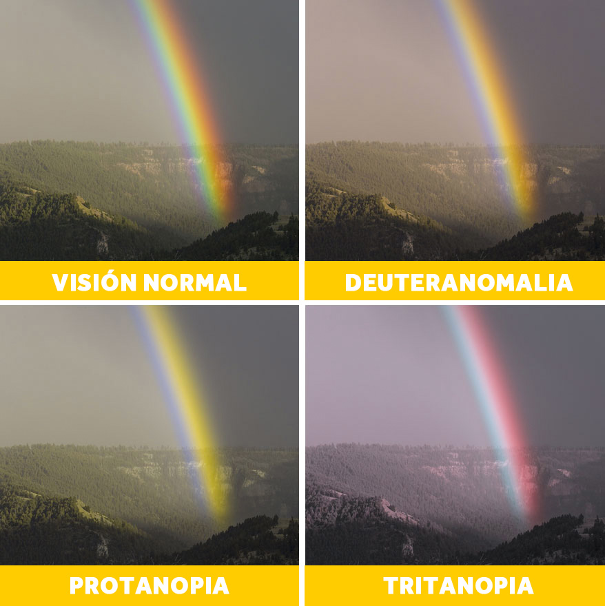 20 Imágenes que muestran cómo ven las personas con problemas de visión