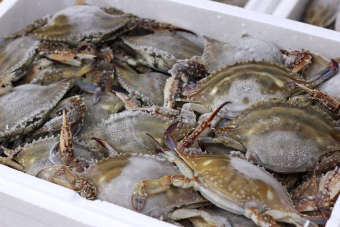 food seafood fresh market fish crab 621040 pxhere.com
