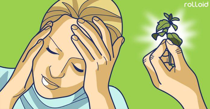alternativas naturales a las pastillas dolor cabeza