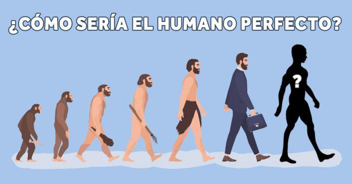 asi es como seria el cuerpo humano perfecto segun una biologa evolutiva banner