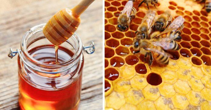 cosas pasan cuerpo beneficios tomar miel