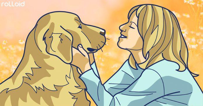 gestos de los perros para comunicarse con nosotros