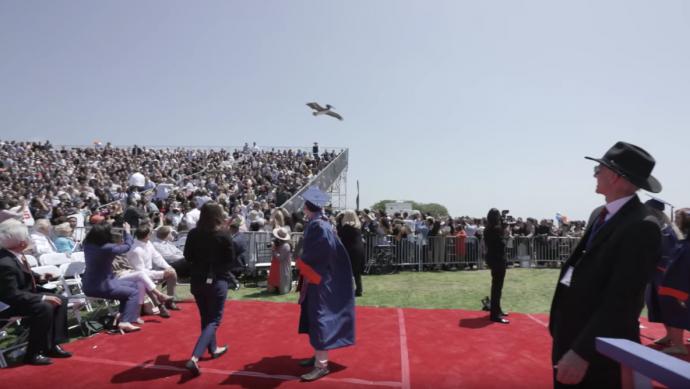 Unos pelícanos se viralizan al irrumpir en una graduación para crear el caos