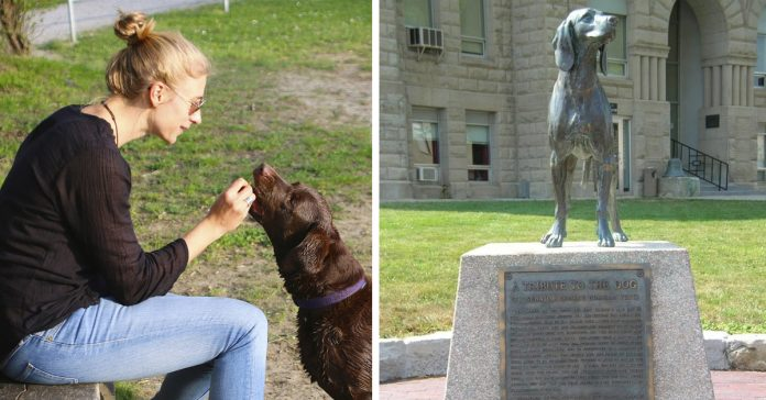 origen frase perro mejor amigo del hombre