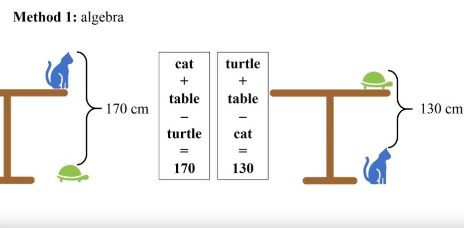 Un acertijo chino se hace viral al pedir que midas una mesa con un gato y una tortuga