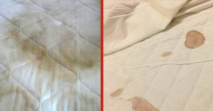 la frecuencia con la que deberias lavar sabanas microbiologo banner