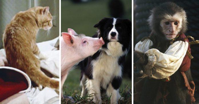 las mejores mascotas de peliculas que todos querriamos tener banner